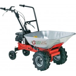 MOTOCARRIOLA TO BURST EUROSYSTEM CARRY 450 BRIGGS AND STRATTON