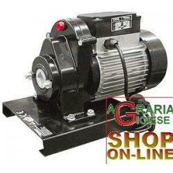 REBER GEARMOTOR HP. 0,30