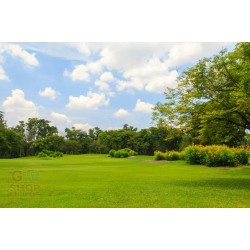 SEEDS FOR LAWN SUN SHIN CARPET MIX FOR HOT ENVIRONMENTS KG. 10