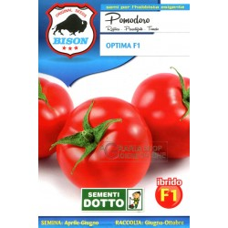 BISON TOMATO SEEDS OPTIMA HYBRID F1