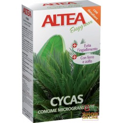 ALTEA CYCAS FERTILIZER DISTRIBUTORS FOR CYCAS, PALM trees AND