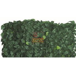 ARELLE HEDGE EVERGREEN LAUREL DOUBLE SHIELD MT. 1,5X3