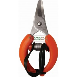 SCISSORS FOR HARVESTING CITRUS FRUIT ORANGES MANDARINS LEMONS