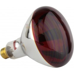 Infrared lamp red E27 Watt. 250 R127